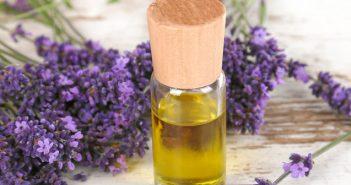 Lavande aspic huile essentielle