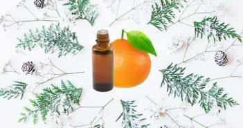 Recette huiles essentielles assainissantes