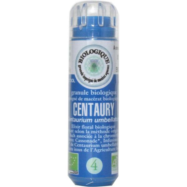 Centaurée (Centaury) 04