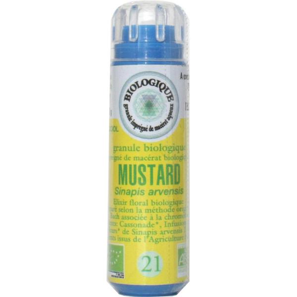 Moutarde N°21 (Mustard)